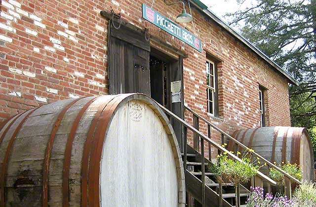 picchetti-winery