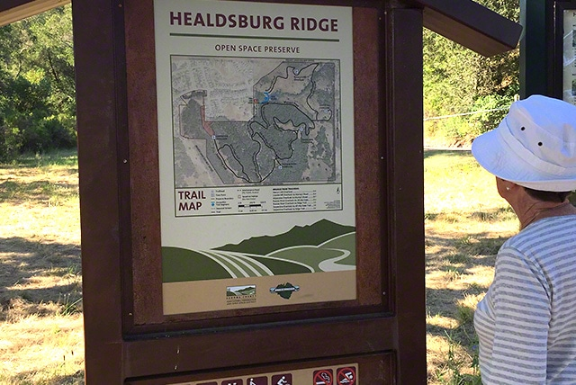 Healdsburg Ridge Open Space -  moderate hike
