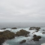 Weekend on the Mendocino Coast