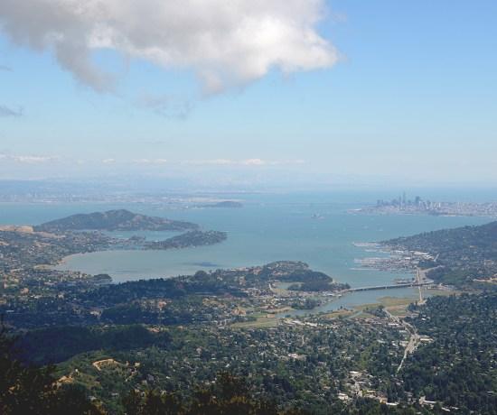 Mt. Tam Hike