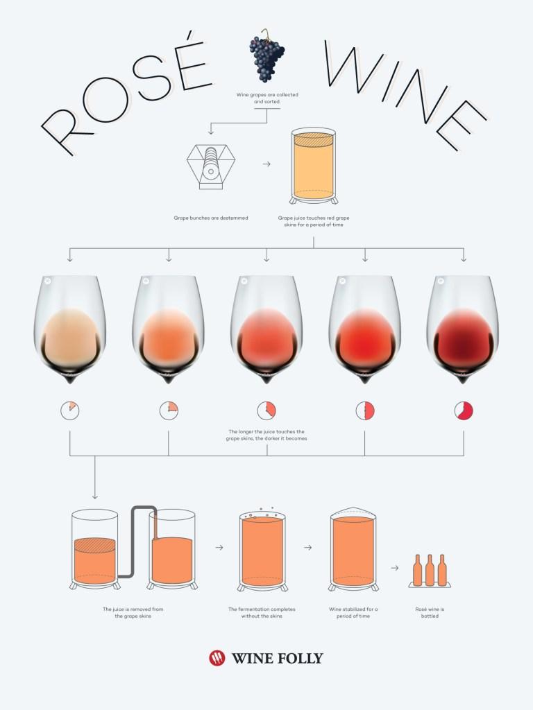 Wine Folly Rose