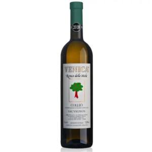 Sauvignon Ronco delle Mele Collio cantina VENICA & VENICA