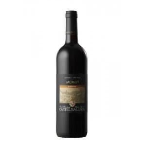 Alto Adige DOC Merlot Riserva 2015 – Castel Sallegg