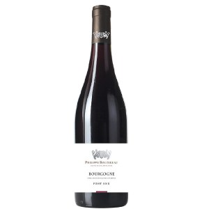 Bourgogne Pinot Noir cantina PHILIPPE BOURZEREAU