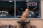 Dog River Coffee