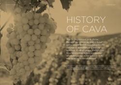 History of Cava