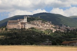 Wine Pleasures Workshop Assisi Buyer meets Italian Cellar