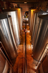 Golden rules for winery visits - avoid showing stainless steel tanks