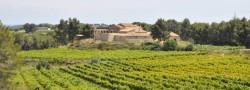50 Great Sparkling wines 2013 Clos Lentiscus 2