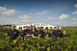 Pares Balta 50 Great Cavas 2014
