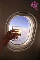 Airplane Wine