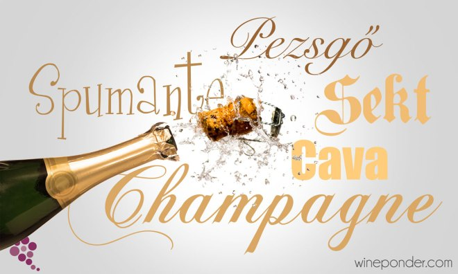 Champagne Designations