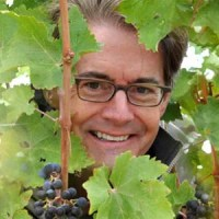 Celebrity Wine – Kyle MacLachlan