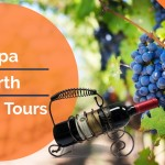 Napa north wine tours in limousine – The best Napa wine tours on yelp