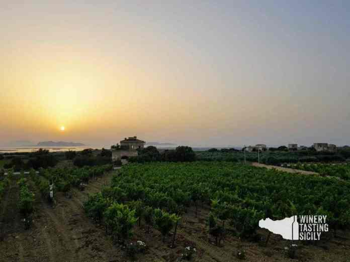 vino marsala vista isole egadi