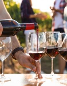 also the ten best italian red wines  beginner   guide rh winescholarguild