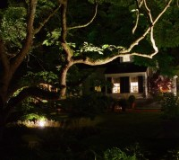 Outdoor Lighting in Virginia Beach - Winesett Nursery and ...