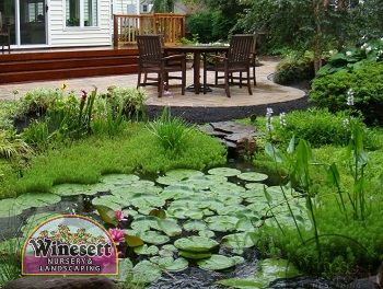 3 benefits adding water features