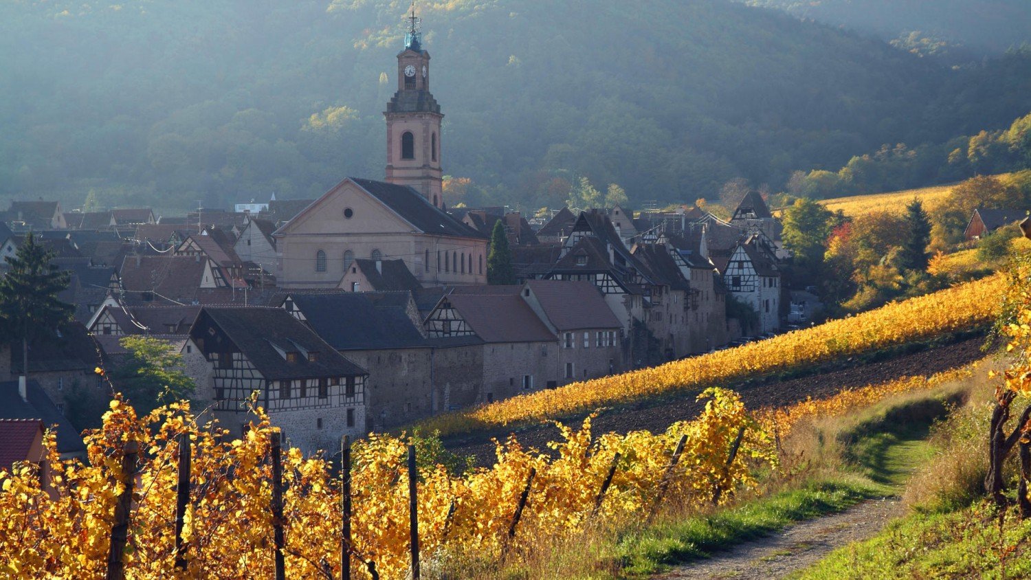Alsace Wine Tour From Colmar From 136pp Wine Tasting France