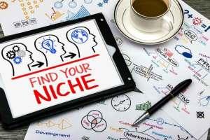 Cara Memilih Niche Market yang Tepat untuk Bisnis Online