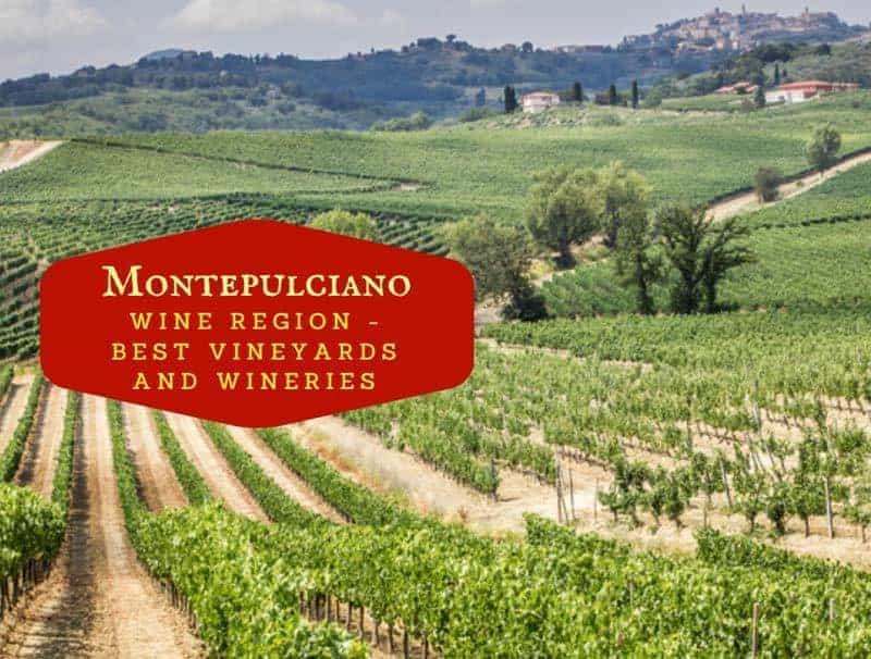 Montepulciano Wine Region - Best Vineyards And Cantinas