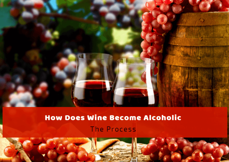 How Does Wine Become Alcoholic