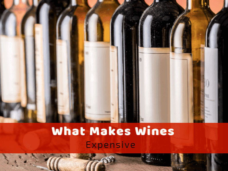 What Makes Wine Expensive?
