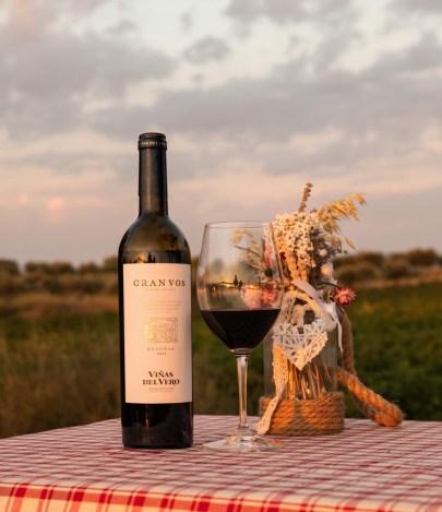 Gran_Vos_Vinas_del_Vero_en_vinedo_2 [1600x1200]wineup
