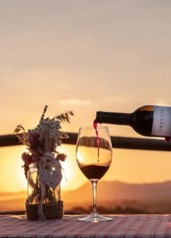 Puesta_de_sol_Gran_Vos_Vinas_del_Vero_1 [1600x1200]wineup