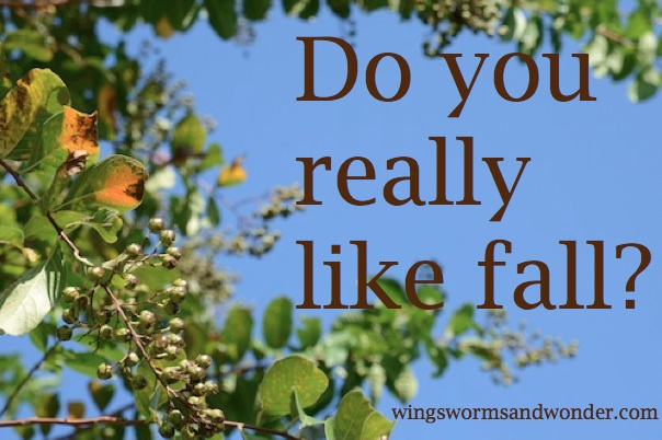 Do You Really Like Fall? - Wings Worms and Wonder
