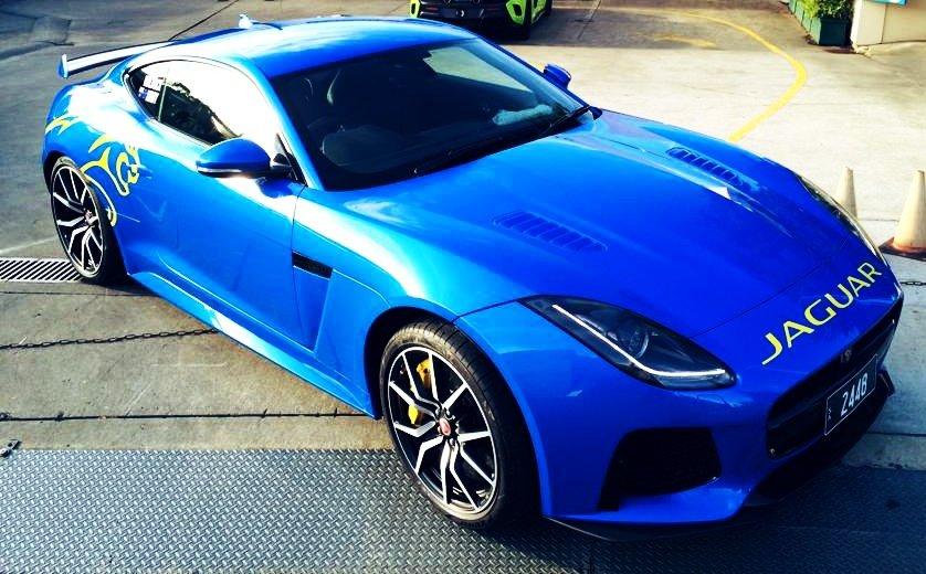 TARGA, racing, team jaguar, customised, car bra, stone chip film, paint protection film, winguard, adelaide, matte paint, adelaide, matt paint, decal, tint, XPEL, Ultimate, Stealth