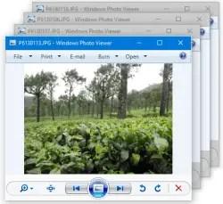 Fix Windows Photo Viewer Opens Multiple Windows When Multiple Files