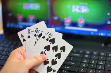 Online Gambling Trends