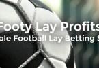 footy lay profits