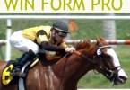 win form pro