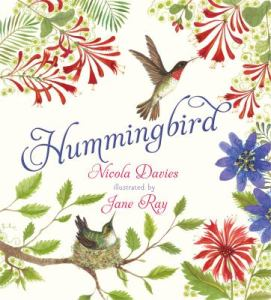 Kids-Hummingbird