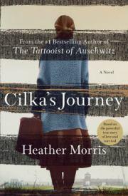 fiction-cilkas-journey