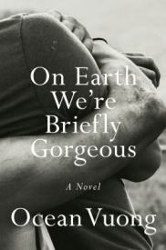 fiction-on-earth-we-were-briefly-gorgeous