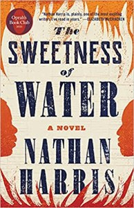 fiction-the-sweetness-of-water