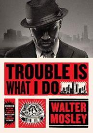 fiction-trouble-is-what-i-do