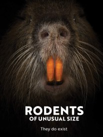 kanopy-rodents-of-unusual-size