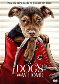 movies-a-dogs-way-home