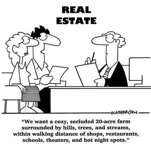 Here is what a real estate client wants