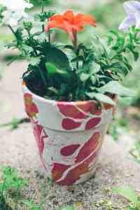 DIY nail polish planter