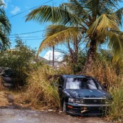 Abandoned car and weeds in yard