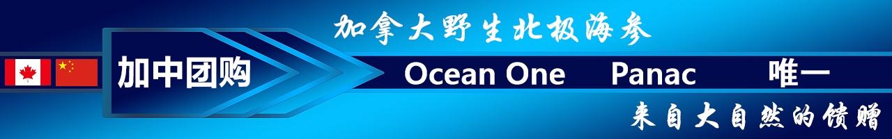 Ocean One/海洋1号