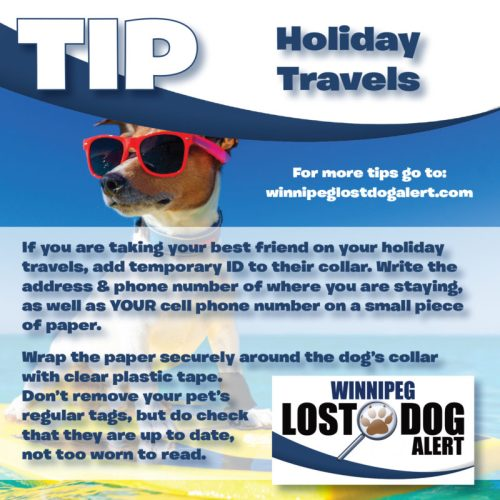 Traveling for the Holidays?