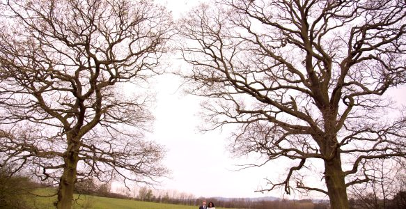 Engagement, Fryent Country Park