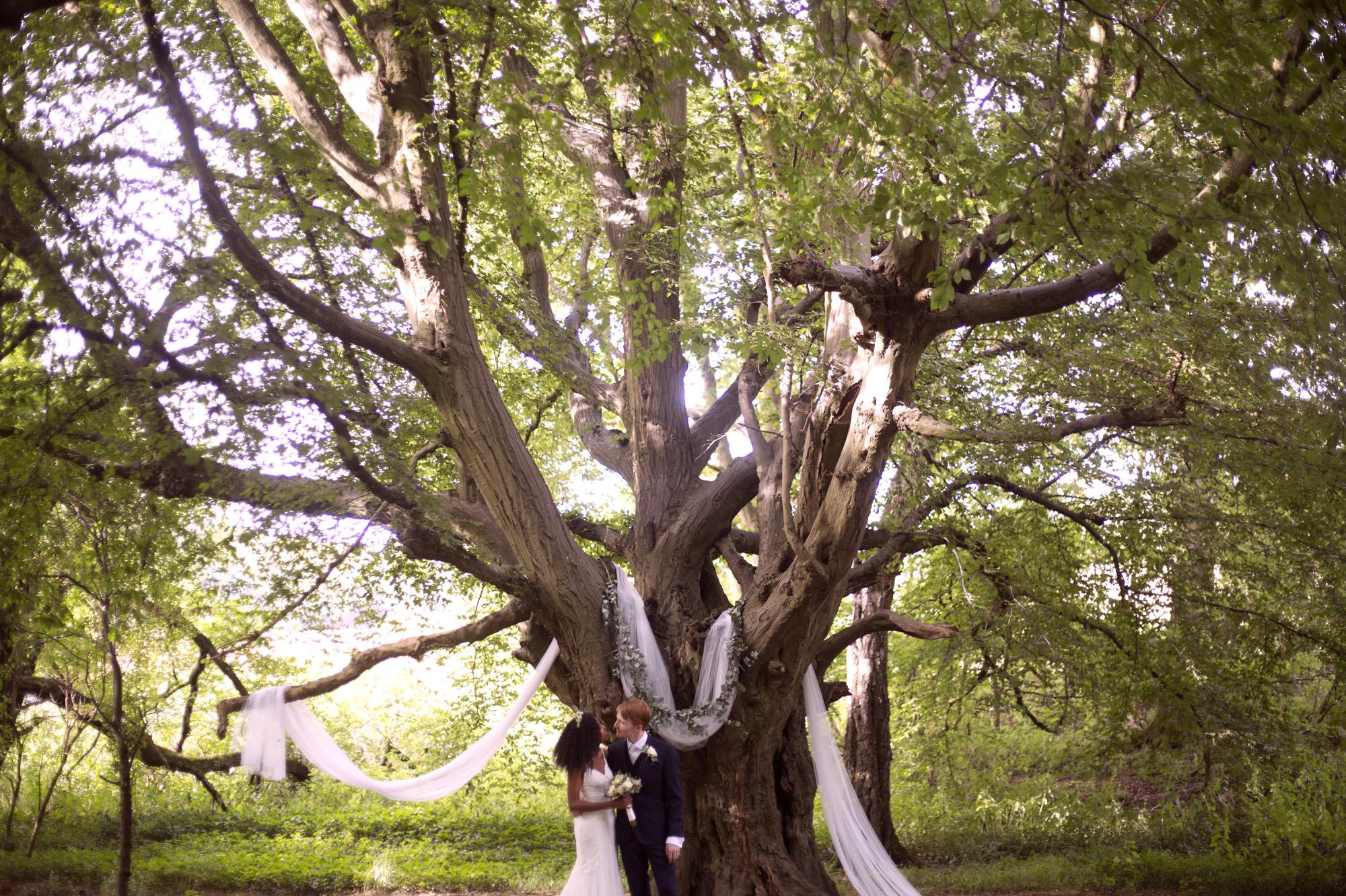 bride and groom in front of the huge oak tree outdoor ceremony woodland wedding photographer