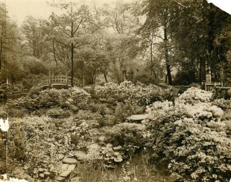 The Japanese Bridge, c. 1930, Winterbourne House and Garden, Digging for Dirt